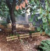 mgarr-garden1